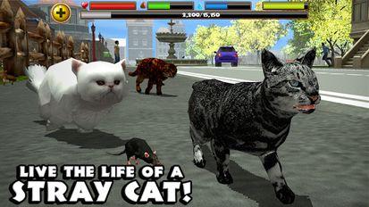 скачать Cat Simulator на андроид мод много денег - фото 8