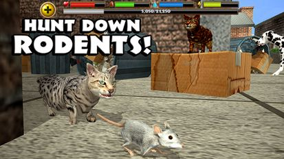 скачать Cat Simulator на андроид мод много денег - фото 5